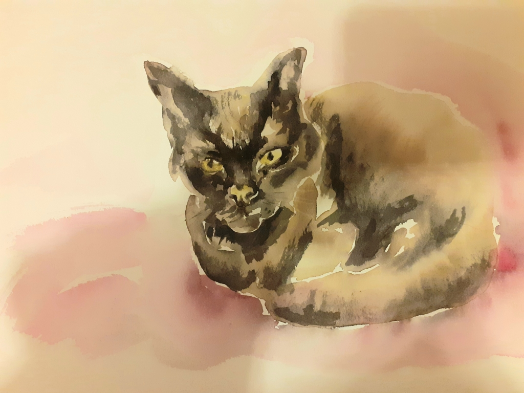 Chat noir aquarelle